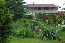 Welcome to the inn in Janowiec (agro-tourism farm).
